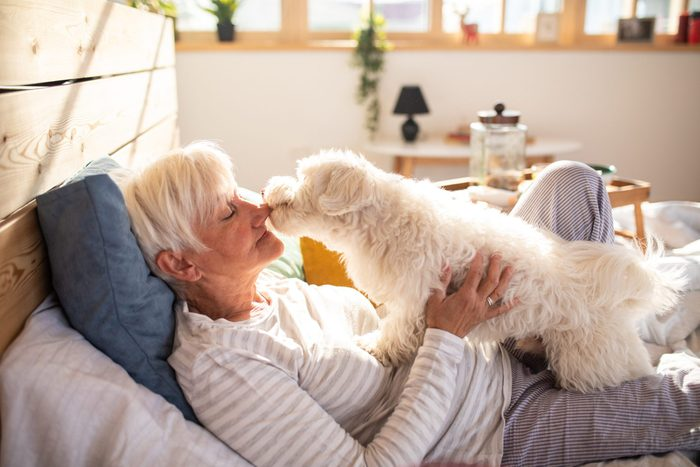 hypoallergenic dogs | Life Is Better With A Pet