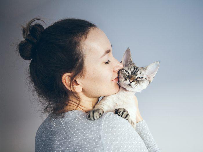 Hypoallergenic Cats Hero