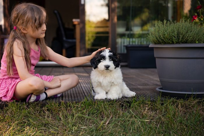 Girl 6 7 Stroking Black And White Puppy Affectionately Whilst Sitting Together In A Back Yard